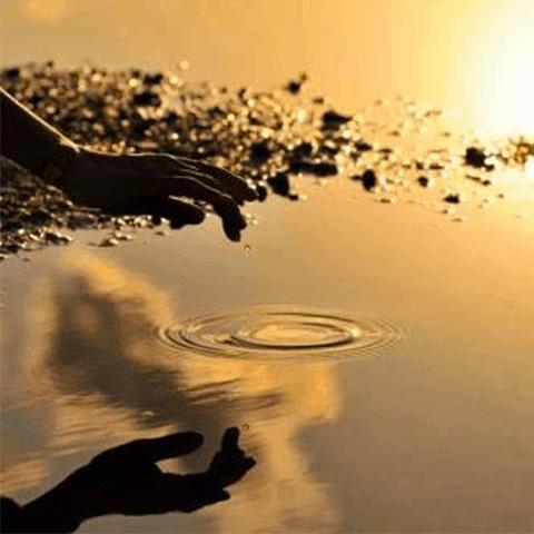Vidya Yoga – Evento Lascia la presa di Daniela Sassaro